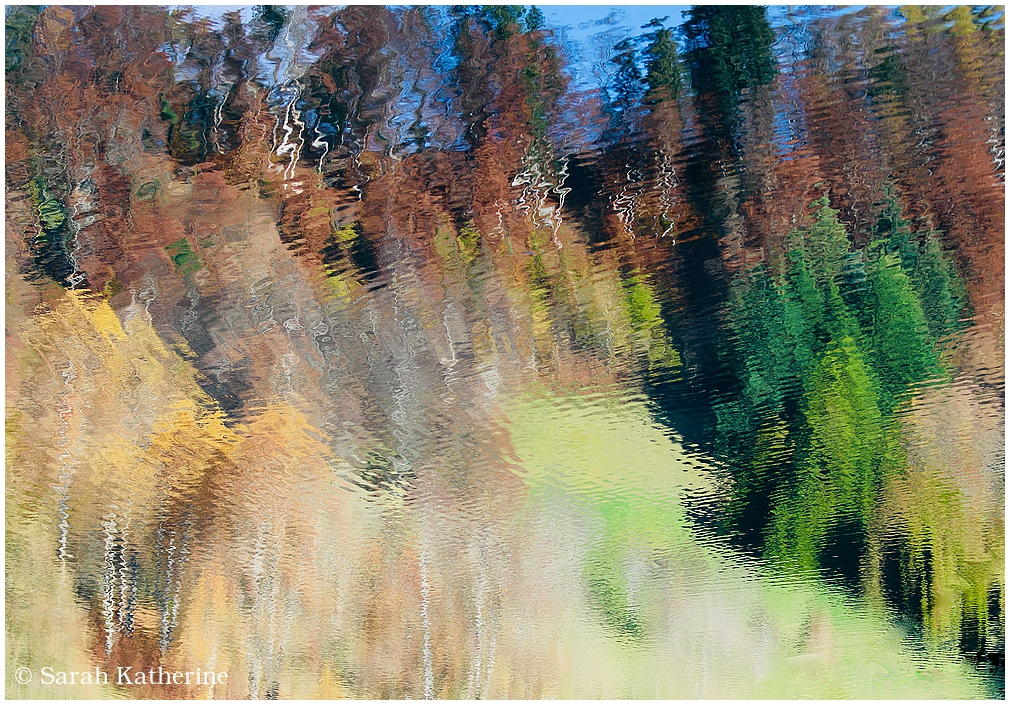 autumn, lake, reflection, trees, painted