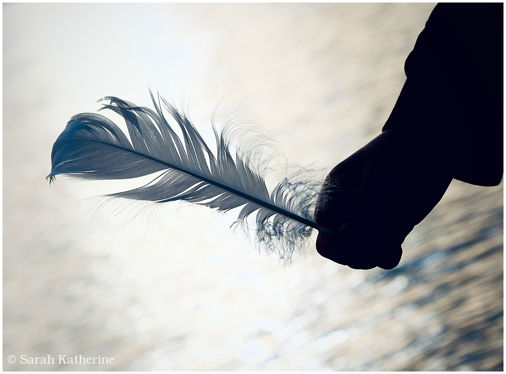 feather, hand, lake, light
