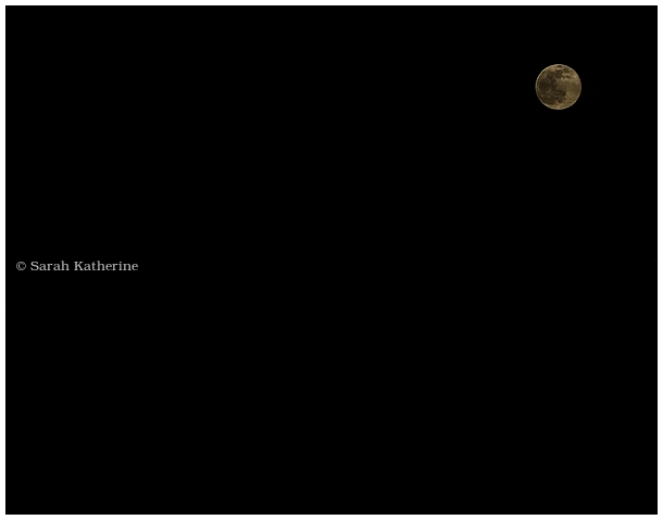 full moon, libra, worm, moon, spring