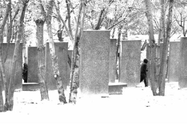 forêt de symboles, valerie Simonnet