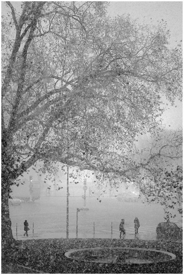 Première neige sur Paris