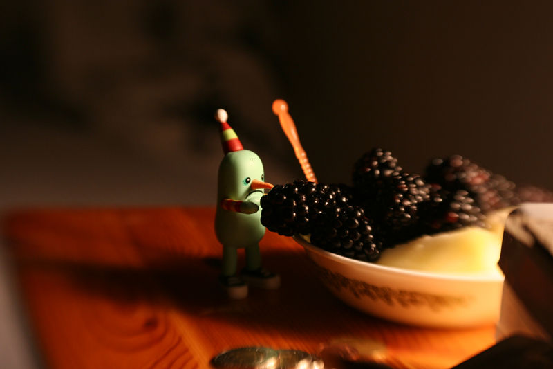 qinn photography blackberries