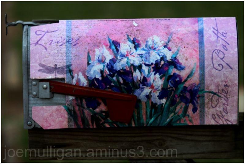hand-painted mailbox with irises