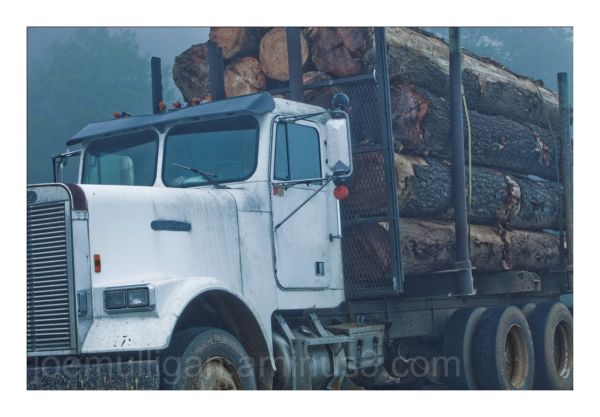 LOGGING TRUCK IN FOG