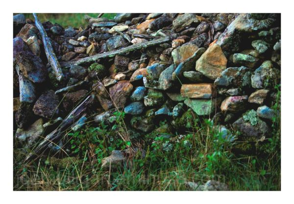THE STONE WALL IN THE PASTURE