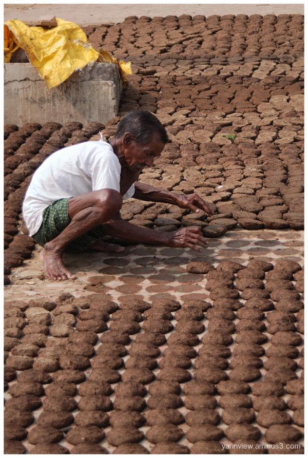 Dry cow dung in Varanasi India