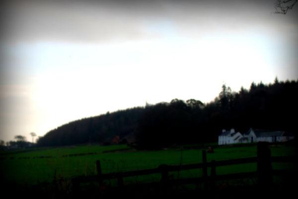 Farm on Bute
