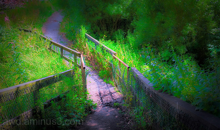 old bridge hdr