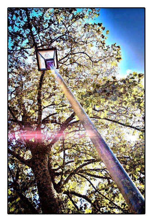 tall lamp post