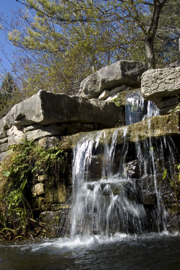 waterfall in garden