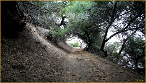 coastal path, sentier du littoral