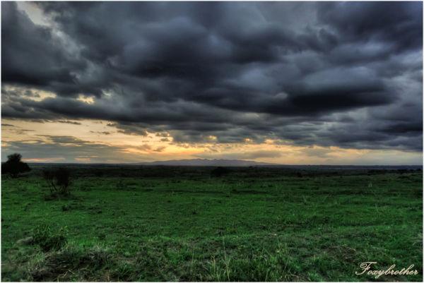 National Parc of Nairobi