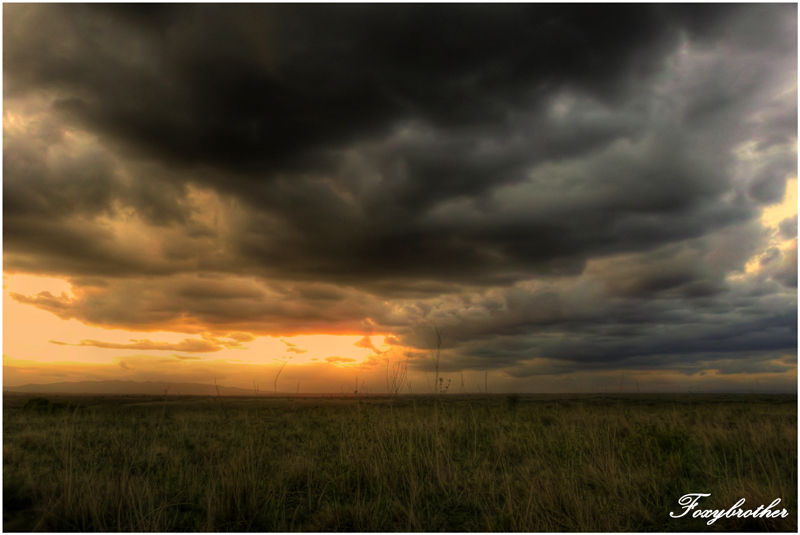 Heavy evening clouds in National Parc of Nairobi