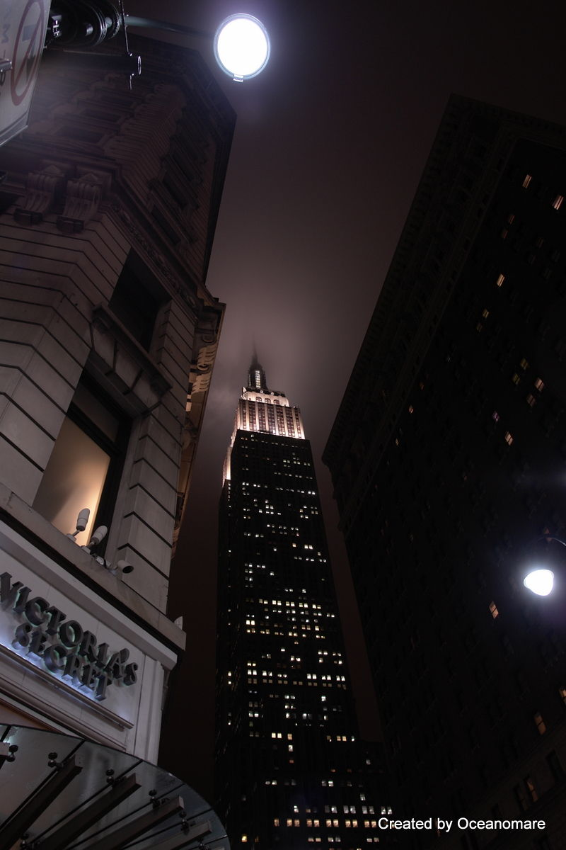 Empire State Building  - jan 2009 - NY