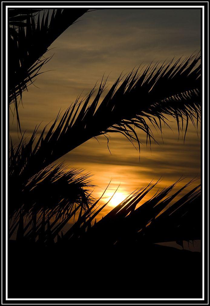 sun, puesta, atardecer, sol