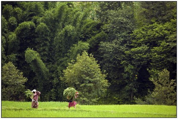 working women nepal
