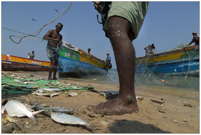 fishermen in Pamban