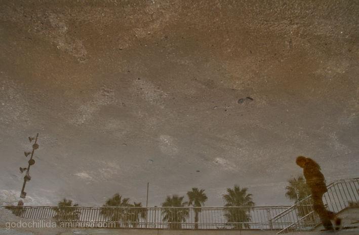 Aquatic city (IV)