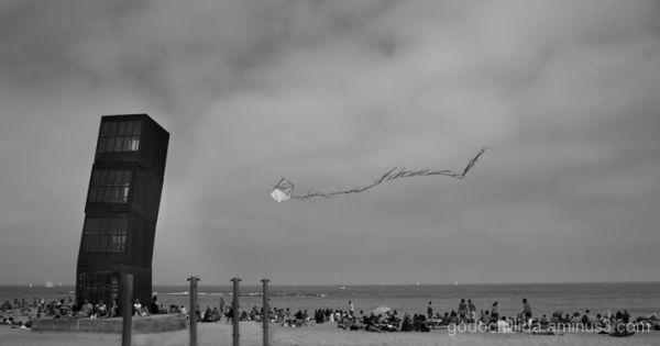 Beach Kite Tower