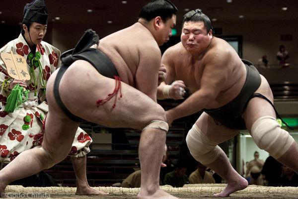 Tokyo, Sumo, Tournament, Wrestlers; clash