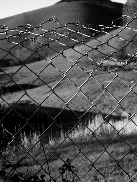 wire fence ~ danville foothills
