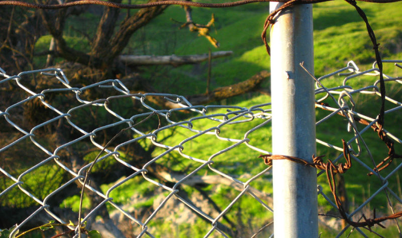 wire fence - danville foothills