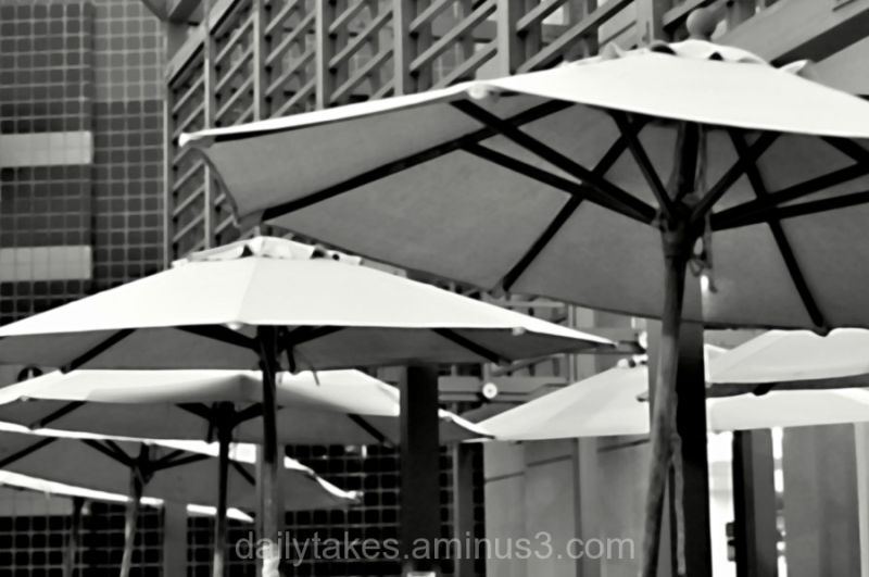 buildings umbrella blackandwhite