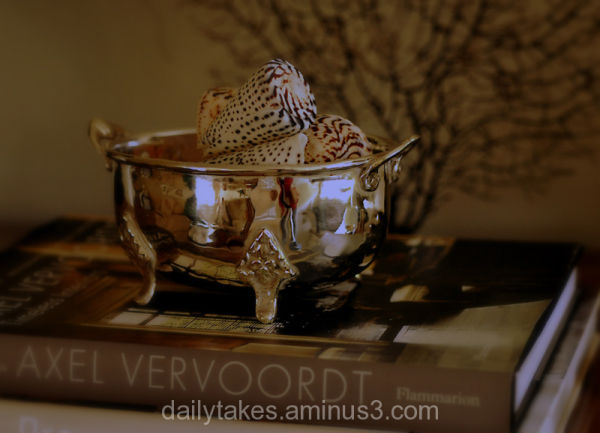 still life: silver bowl with shells