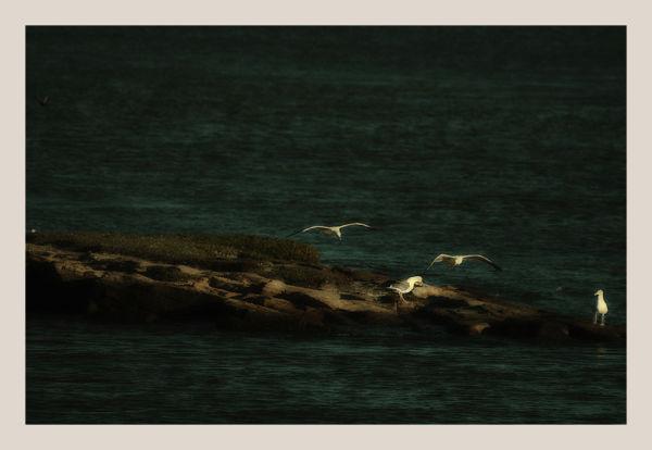 landing rock ....