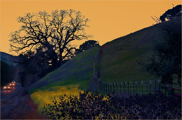 california winter : country road
