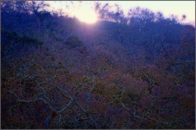 sun sliding behind the hill  . . .