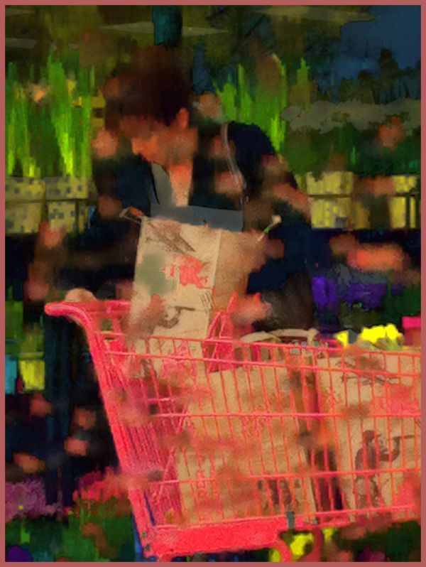 unloading groceries in the rain  . . .
