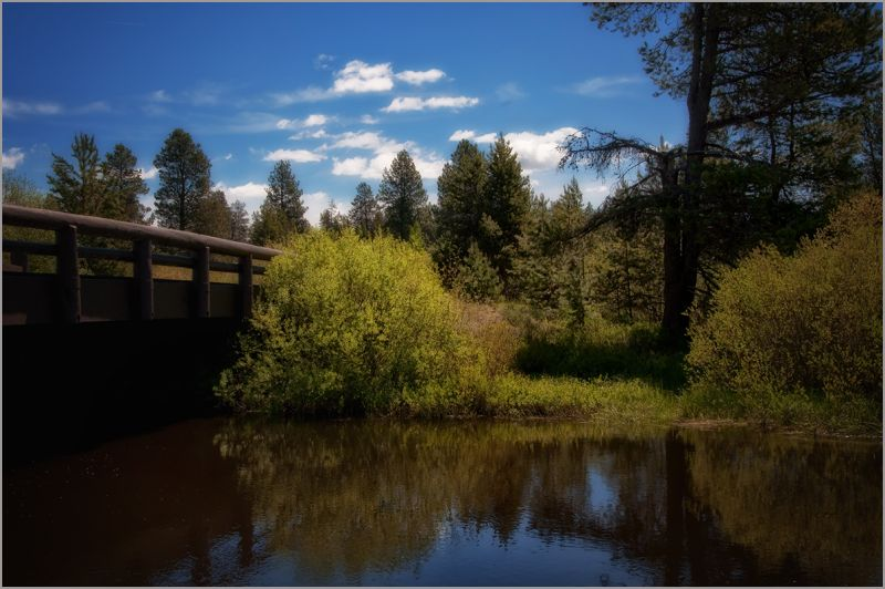placid moment on the Little Deschutes River  . . .