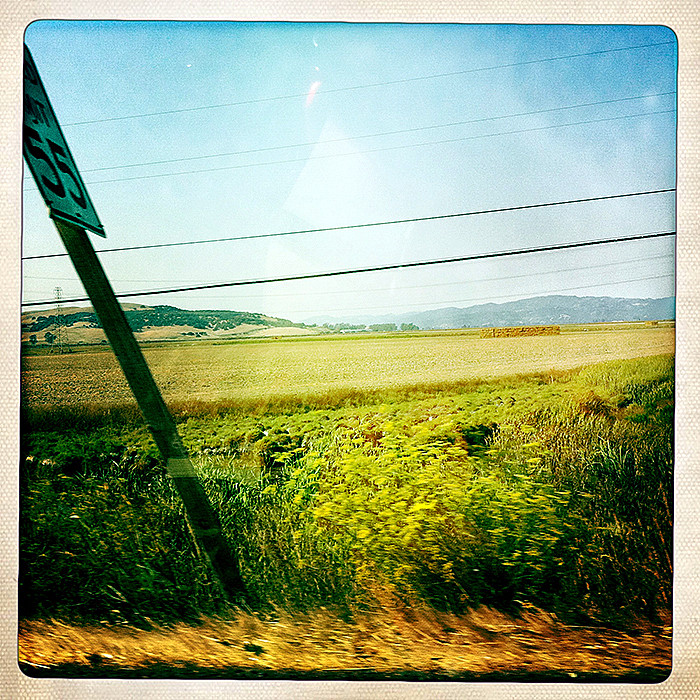 the road to petaluma :  55mph