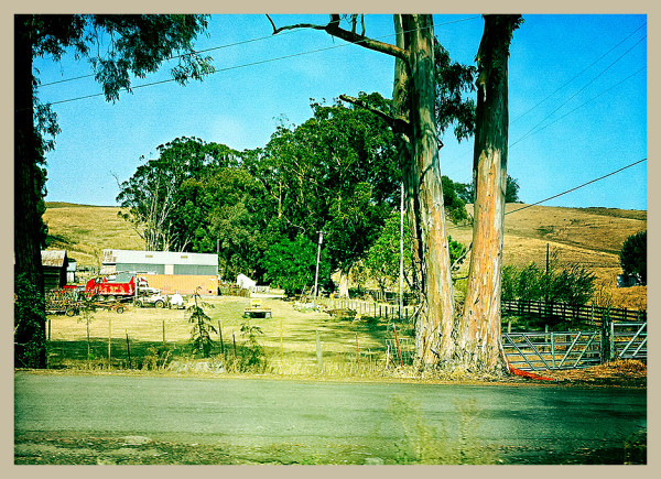 the road to petaluma : red truck