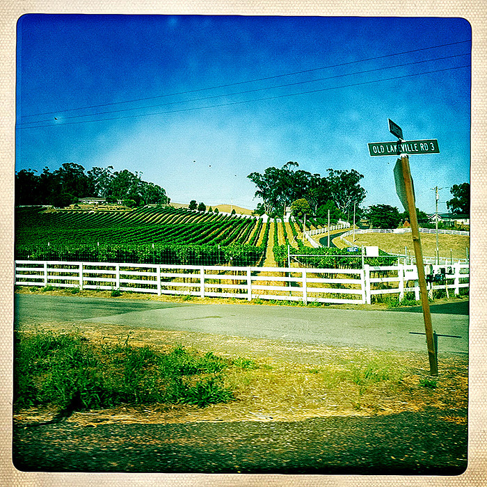 the road to petaluma : old lakeville road 3