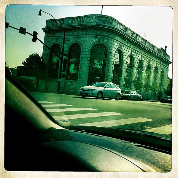 the road to petaluma : Seed Bank