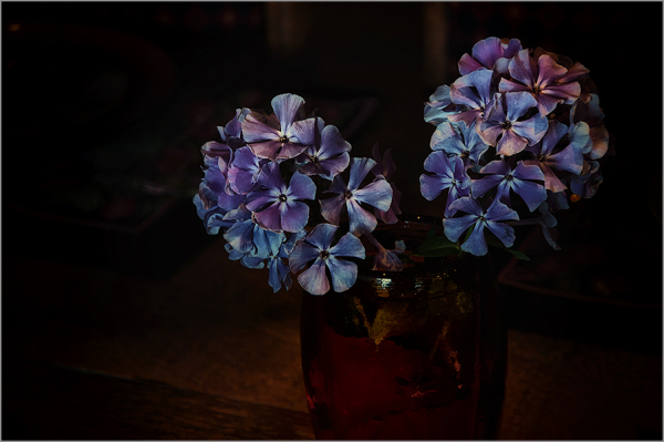 flowers on the table   . . .