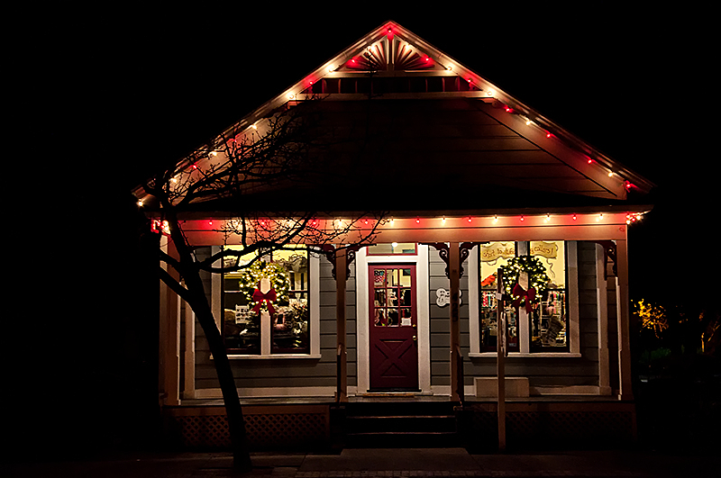 Danville building night christmas lights pet-store