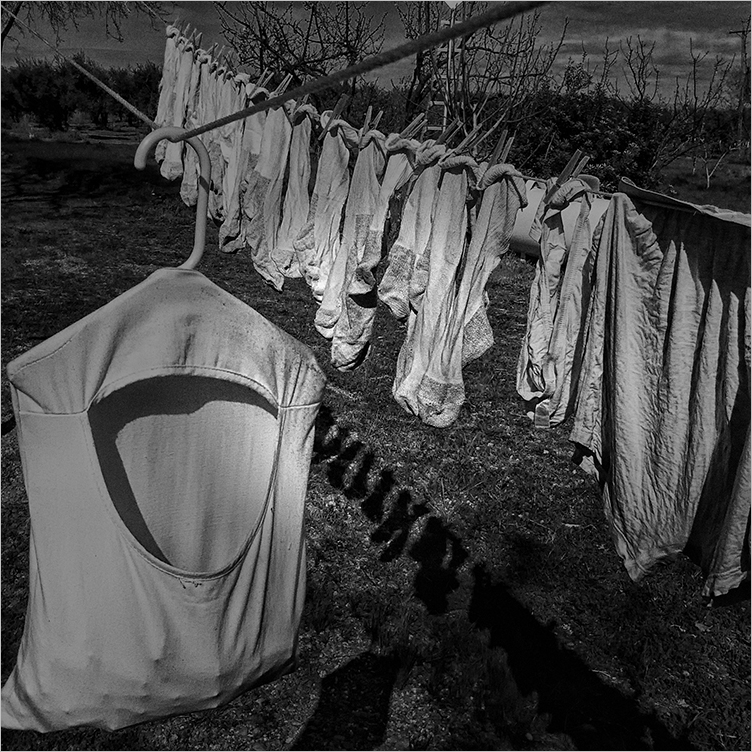 hung out to dry   . . .