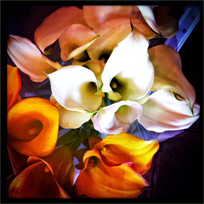 bouquet with calla lilies   . . .