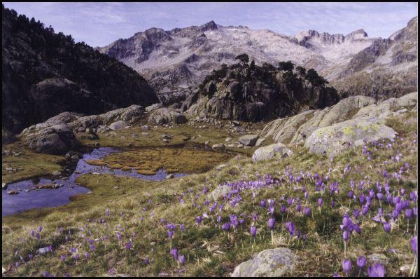 Prop de l'Estany Negre i el refugi Ventosa i Calve