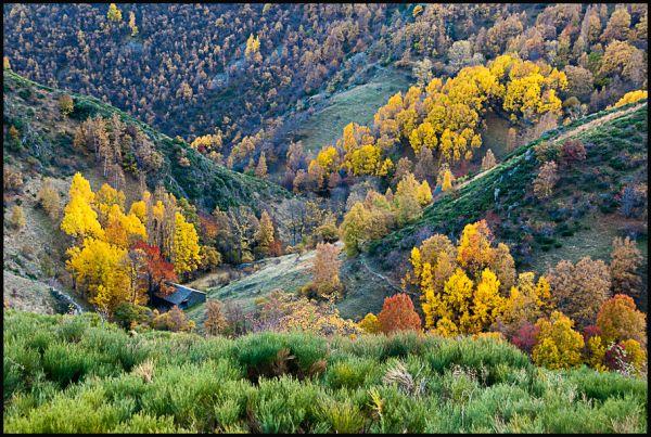 Vall d'Estaón (Pallars Sobirà)