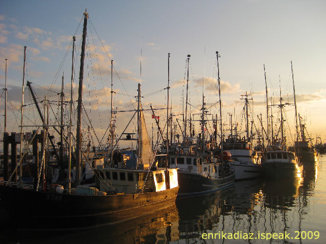 Stationary Yachts