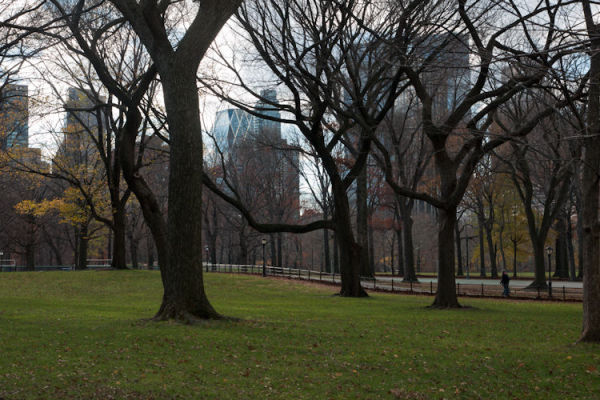 Central Park (II)