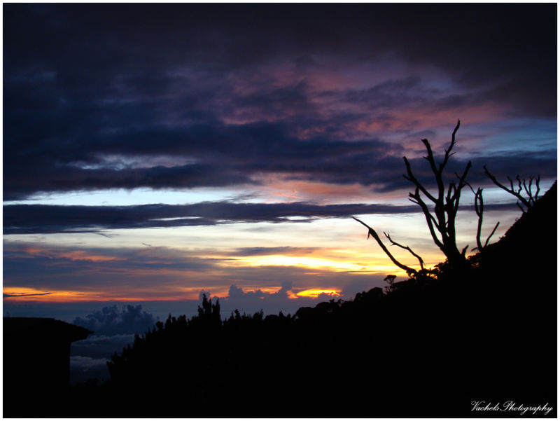 View from Mt. Kinabalu in the evening