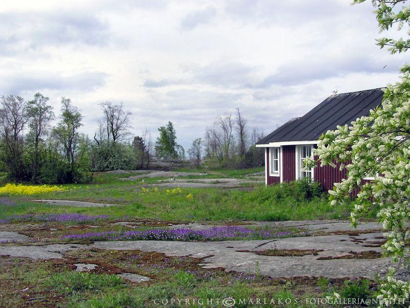 Harakka island of Helsinki