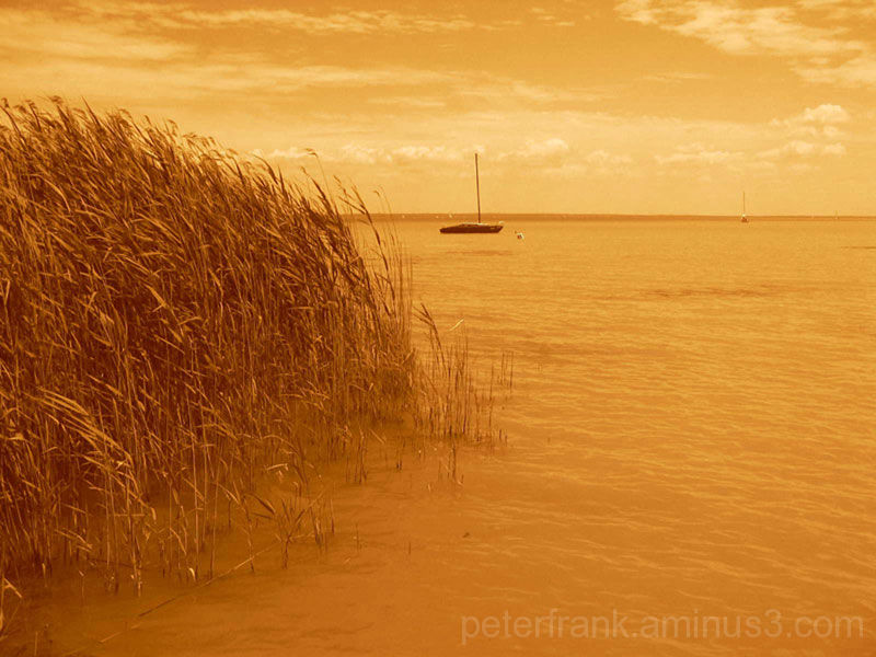 lake water yellow landscape orange