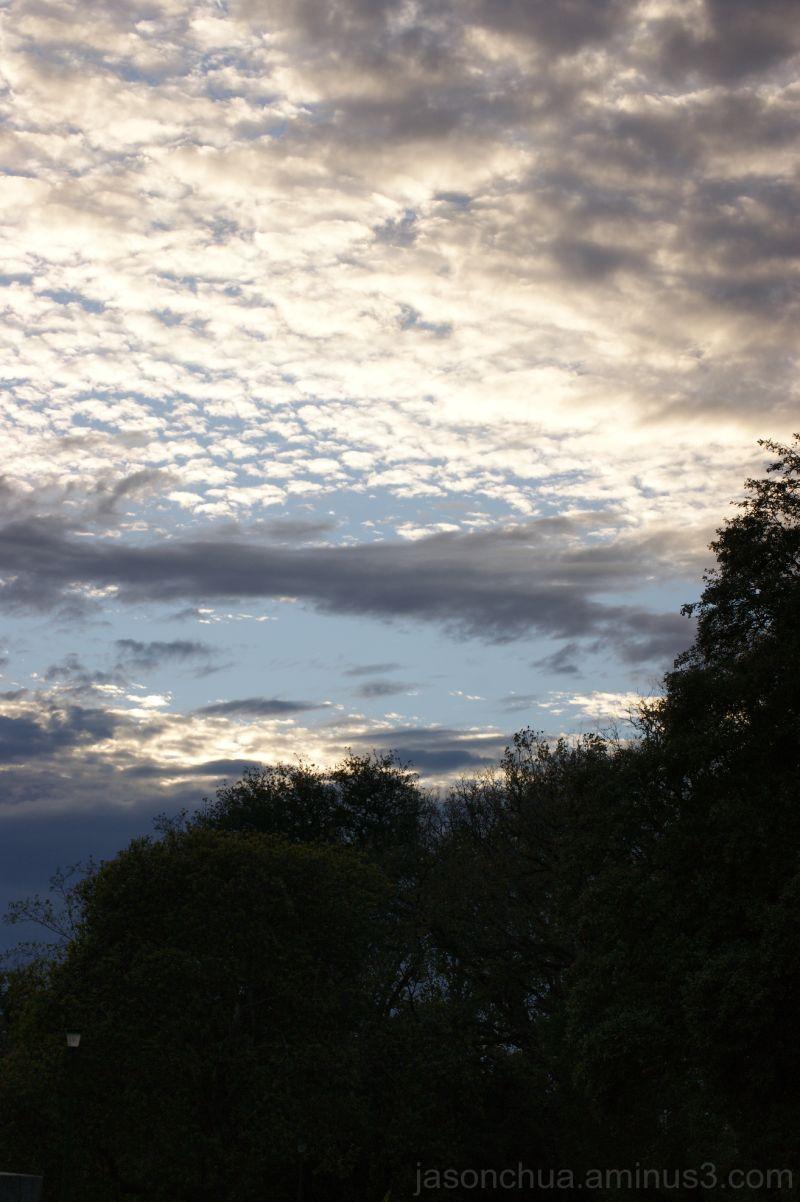 Sunrise from Alexandra Gardens