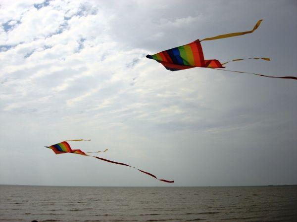 Kites over Morib Beach